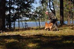 Jagdprüfung Schweden