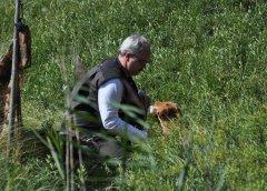 Jagdprüfung Schweden: Tolling hinter der Tarnblende