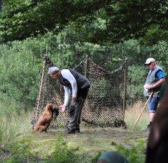 Jagdprüfung Schweden: Sauberes abgeben nach der Markierung